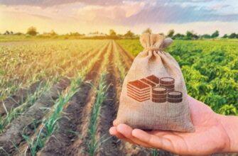 Уплата земельного налога организаций в 2021 году