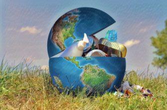 Экологический сбор: за что платим, отчетность + формула расчета